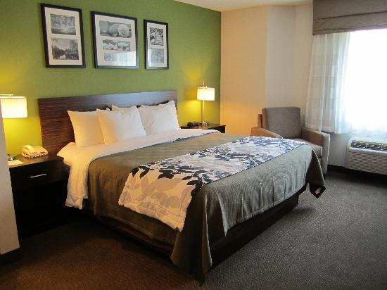 Sleep Inn Manchester Airport: Sleep Inn Londonderry NH King Room