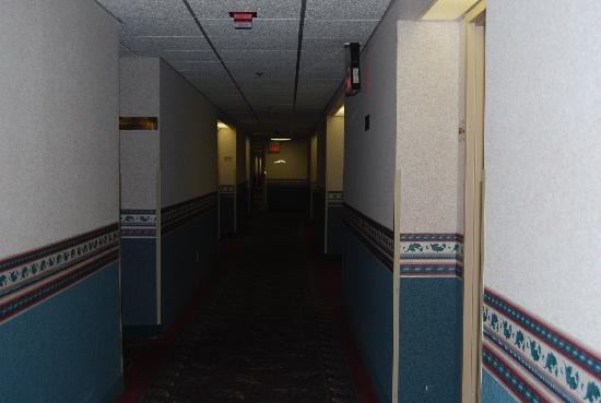 Toledo Hotel and Conference Center: Hallways are long and dark