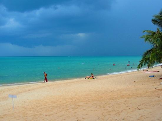 Pavilion Samui Villas & Resort : plage devant l'hôtel
