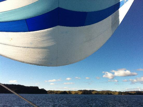 Pure Cruise - Day Cruises: View from the beanbag