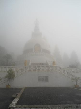 Darjeeling, India: In Budhist temple in fog