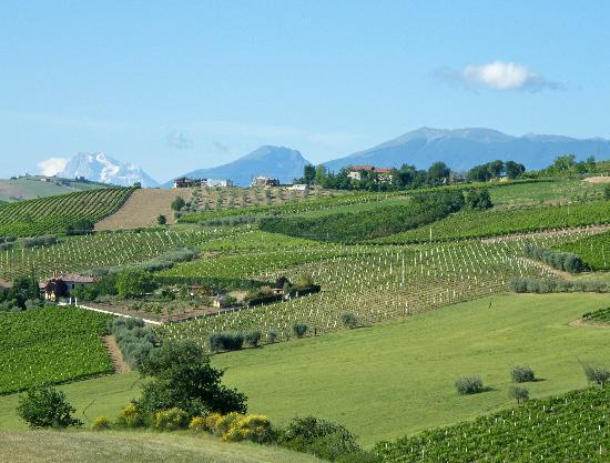 Agriturismo Fiorano: Breakfast with a View!!