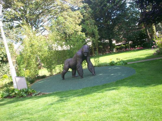 Merton Hotel: A gorilla in the garden
