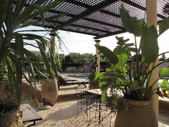 Essaouira Lodge: près de la piscine