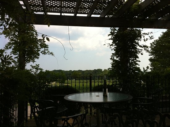 Angels Gate Winery: View from patio