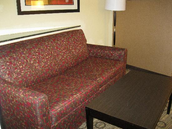 Comfort Suites At WestGate Mall: sleeper sofa