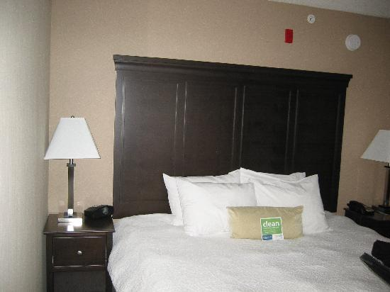 Hampton Inn & Suites by Hilton Brantford, Ontario: Lit Queen à la literie impeccable