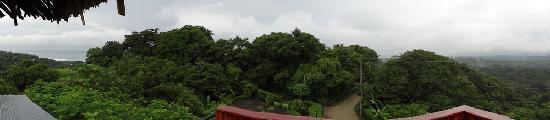 Buena Vista Villas 사진