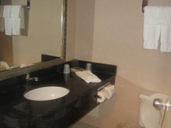 Holiday Inn Mississauga Toronto West: washroom