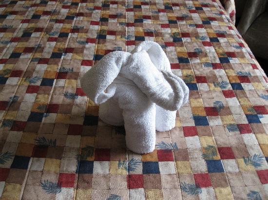 Cairns Motel : Towel Art Elephant
