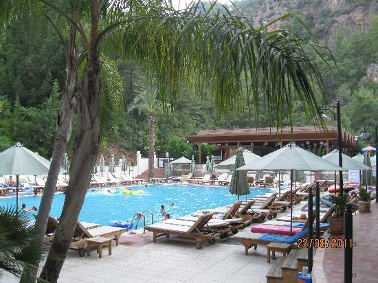 Julian Forest Suites: lovely looking pool