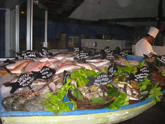 Seafood Cove: Seafood Collection