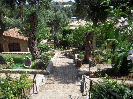 Kommeno Bay, กรีซ: garden