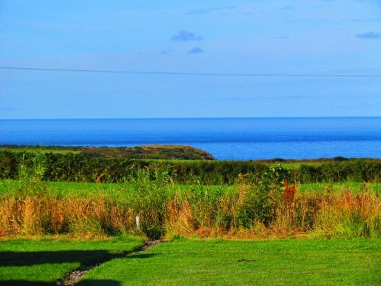 Pitton Cross Caravan & Camping Park : view from our front door.