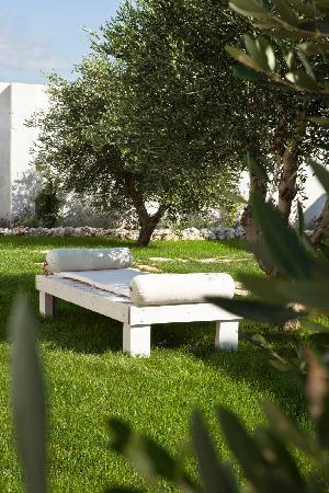 Giardini privati foto di tenuta potenti manduria for Giardini privati