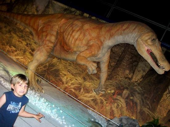 Thinktank Birmingham Science Museum: some scary dinosaurs..:/