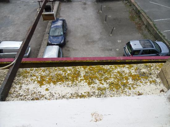 The Bath House Hotel: VIEW FROM OUR WINDOW.. (TOO DIRTY TO SEE THROUGH CLOSED) NOTICE THE 'GREEN ' NATURAL PLANT LIFE
