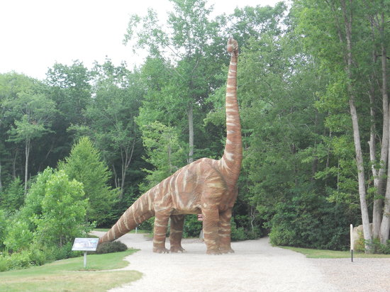 ‪The Dinosaur Place at Nature's Art Village‬