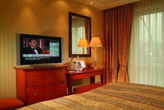Maritim Hotel Würzburg: Zimmerbeispiel