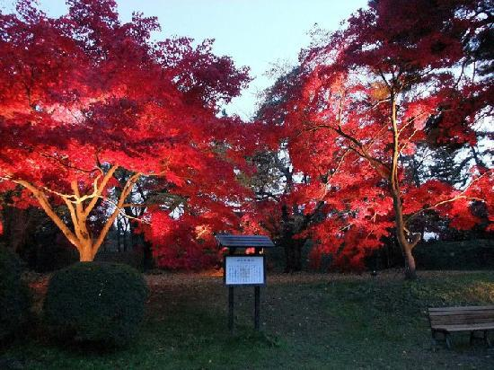 Hirosaki Park: when lit up