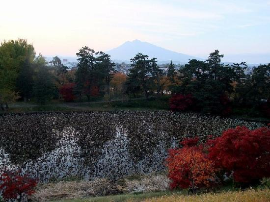 Hirosaki Park: Mt Iwaki in background (need to pay to get access to this area)