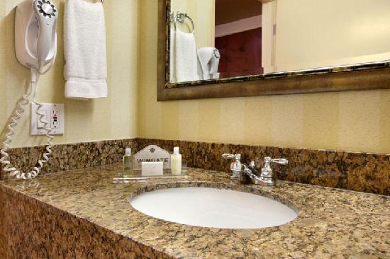 Wingate by Wyndham Tinley Park: Standard Rooms Bathroom