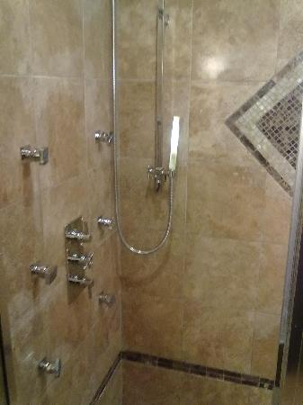 Wingate by Wyndham Tinley Park: Luxury Suite Waterfall Shower & Body Jets