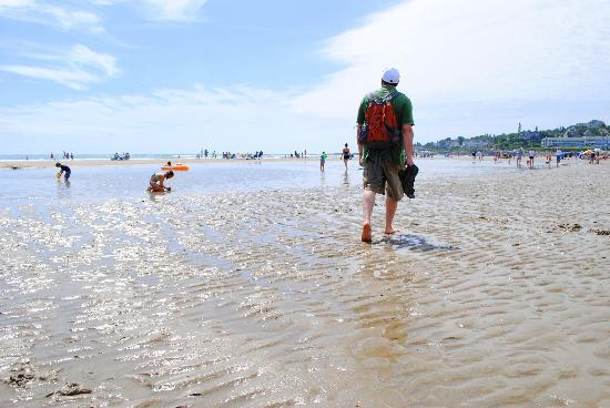 Ogunquit Beach: Walk to the right for practically zero crowds!