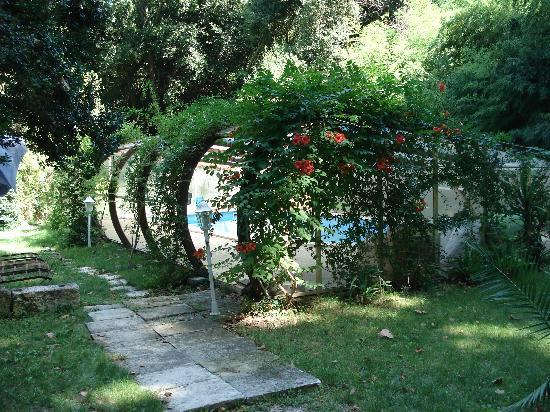 Domaine de Mailhan Chambres D'hotes: La piscine, enfouie dans la végétation