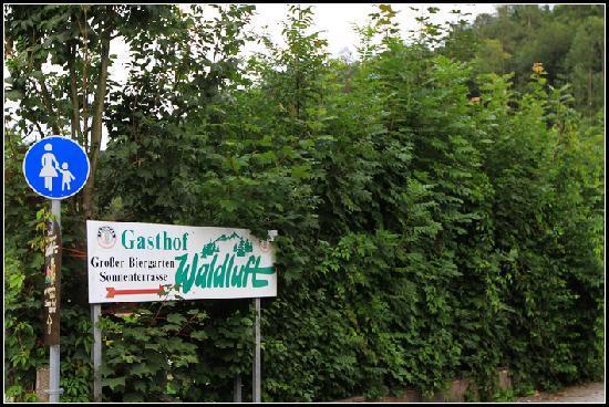 Gasthof Waldluft: Way to the hotel