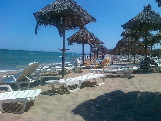 Villaggio Turistico Europeo: Beach #1