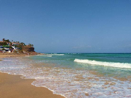 Occidental Jandia Mar : Jandia Beach