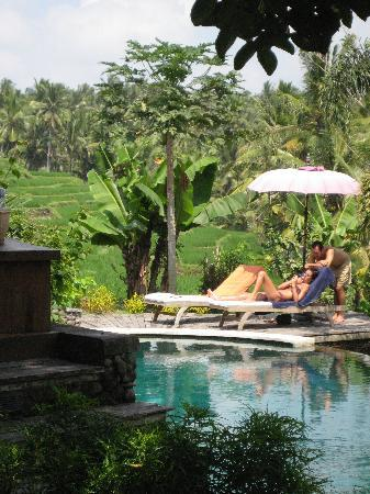 Soulshine Bali: Beautiful pool and views