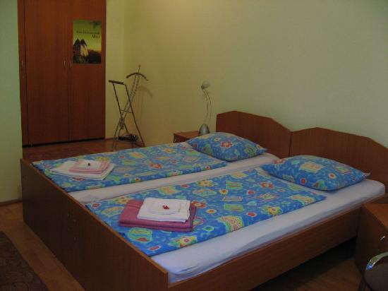 Casa Baciu: habitacion