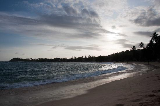 Hotel Panorama: Unawatuna beach