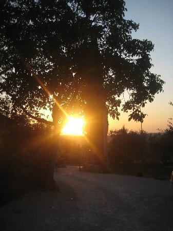 Molino della Lodola : tramonto incantato