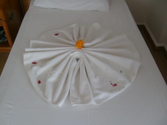 Oylum Park Hotel: towels
