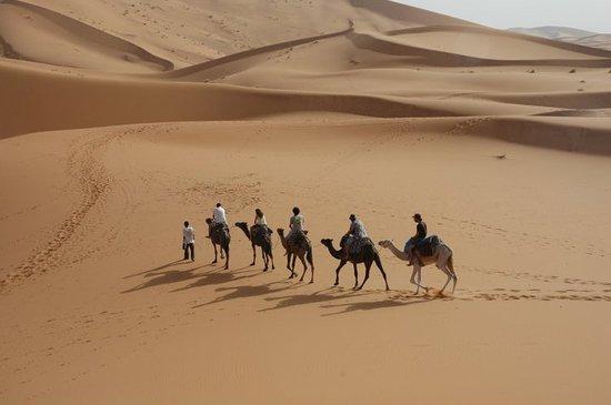 Ligne d'Aventure - Day Tours: Desert Camel Treak Morocco