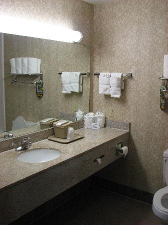 Comfort Suites Waco: spacious and clean bathroom