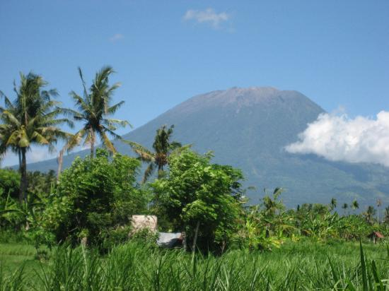 Jasri Bay Hideaway: Mount Agung view from Turle Bay