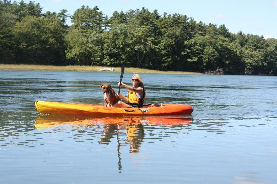 Kayak Excursions: Why not bring your furry friend along?