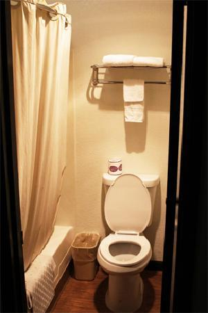 Motel 6 Willows: Standard restroom - very clean.