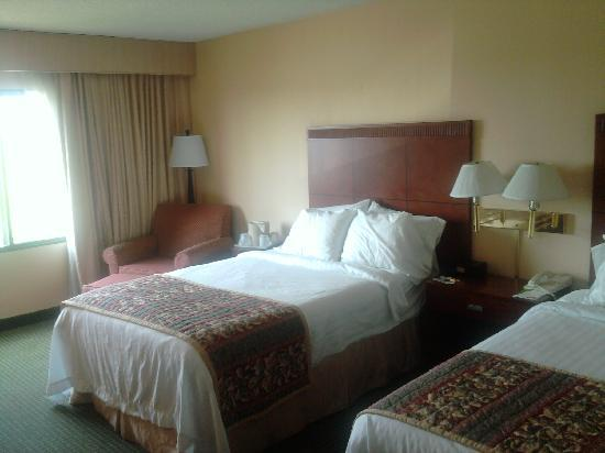 Courtyard Cincinnati Airport South/Florence: Double Room