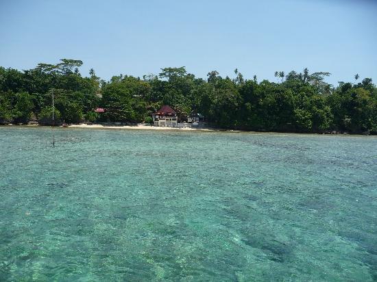 Bunaken Cha Cha Nature Resort: vue du cacha
