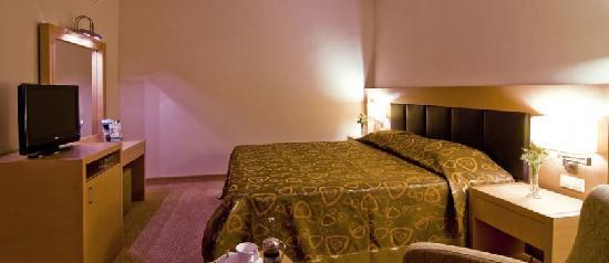 Adrina Termal Health Spa Hotel: oda