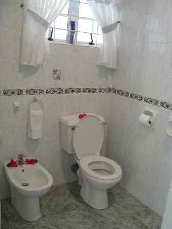 Villa Gaiarda: Bagno camera standard