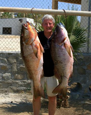 Martin Verdugo's Beach Resort: pargo to 50lb