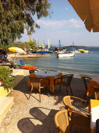 Toms Seaside Restaurant: veiw of the water sports just next door
