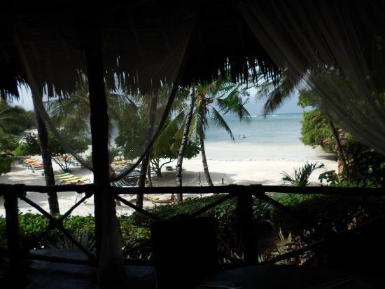 Dorado Cottage: vista spiaggia da ristorante quando non ci sono alghe
