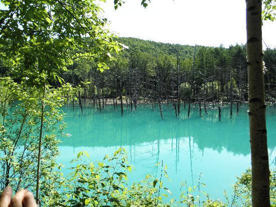 Blue Pond : 手が写ってしましました。